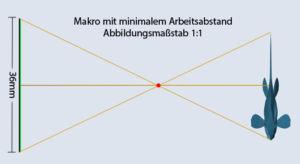 1zu1 Makro-Objektive