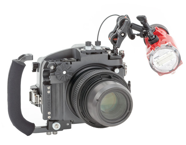 Inon X2 EOS 6D Macro Setup