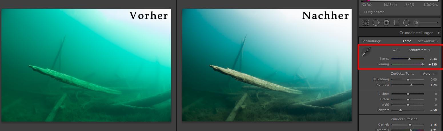 Tönung Blauwasser Bildbearbeitung Unterwasserfotografie
