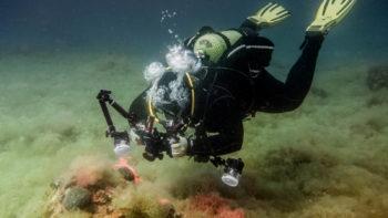 Permalink auf:Unterwasser fotografieren lernen