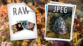 Permalink auf:Solltest du in RAW oder JPEG fotografieren?