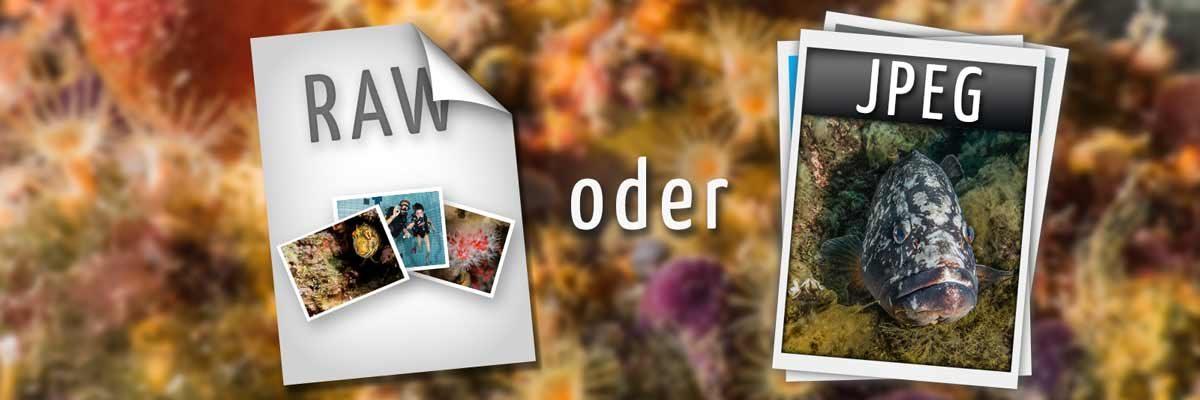 Weiterlesen: Solltest du in RAW oder JPEG fotografieren?