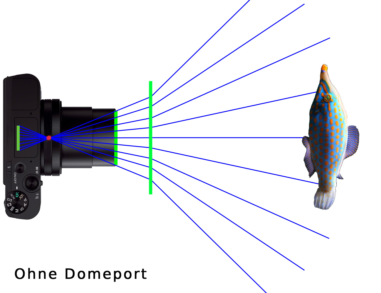 Ohne Domeport