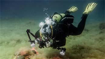 Permalink auf:Tinos Blog auf unterwasser-fotografieren.de