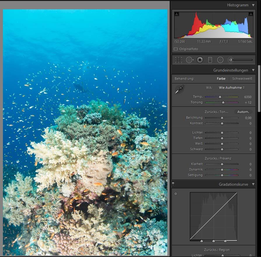 Unterwasserfotografie - Bildbearbeitung Beispiel am Außenriff- Erg Monika im Roten Meer mit Diving.de