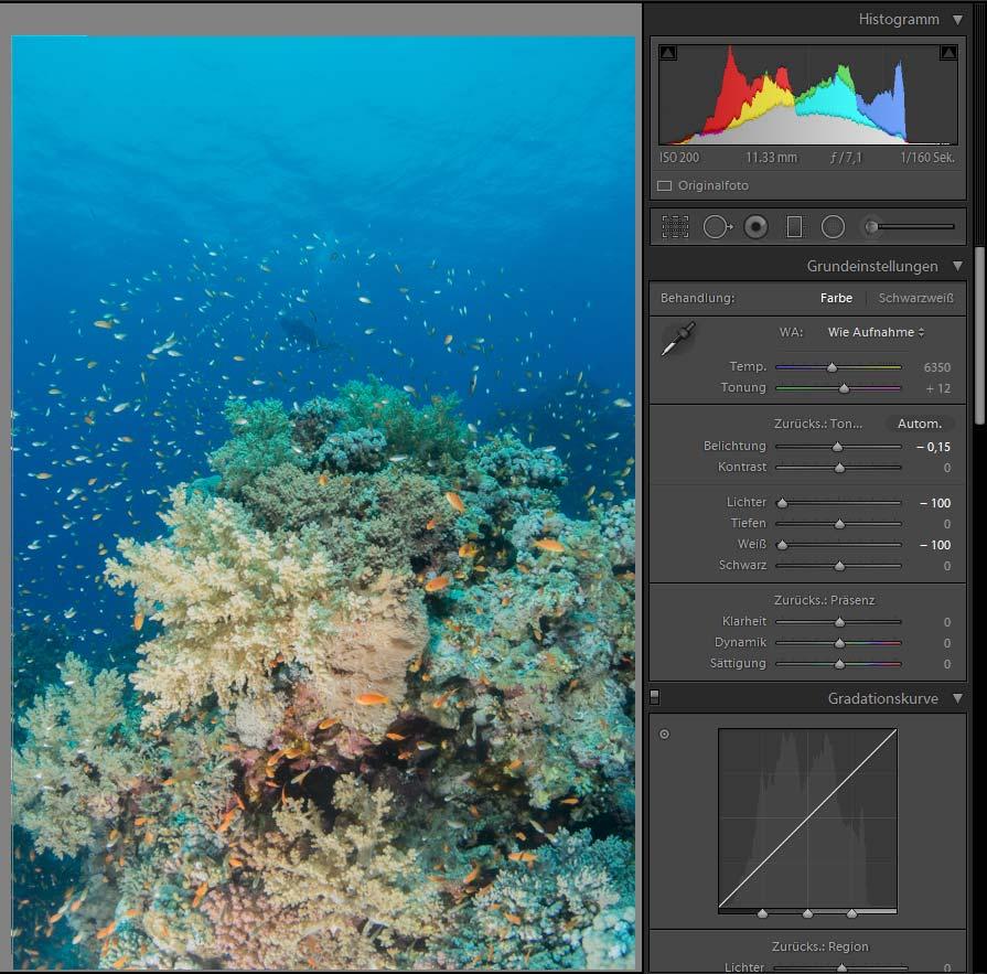 Bildbearbeitung Unterwasserfotografie - Belichtung anpassen - Lichter reduzieren