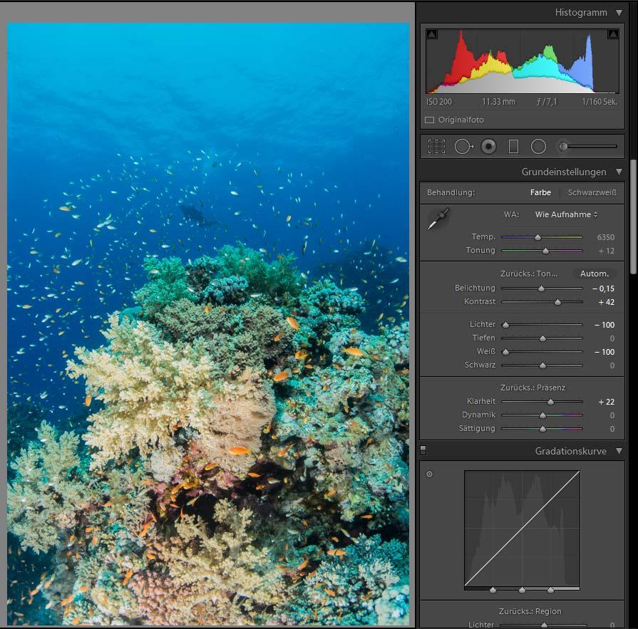 Unterwasserfotografie - Bildbearbeitung Kontraste erhöhen und Schatten verstärken