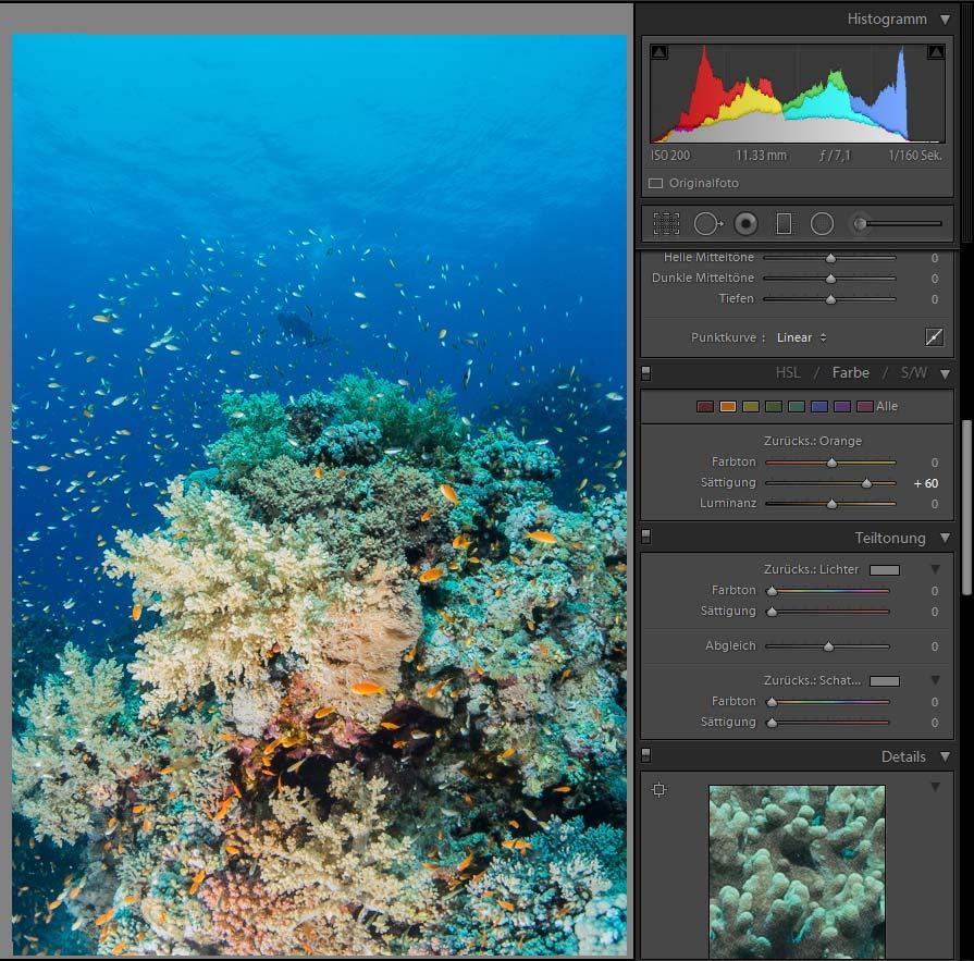 Bildbearbeitung in der Unterwasserfotografie - Farbkorrektur Gelb und Orange