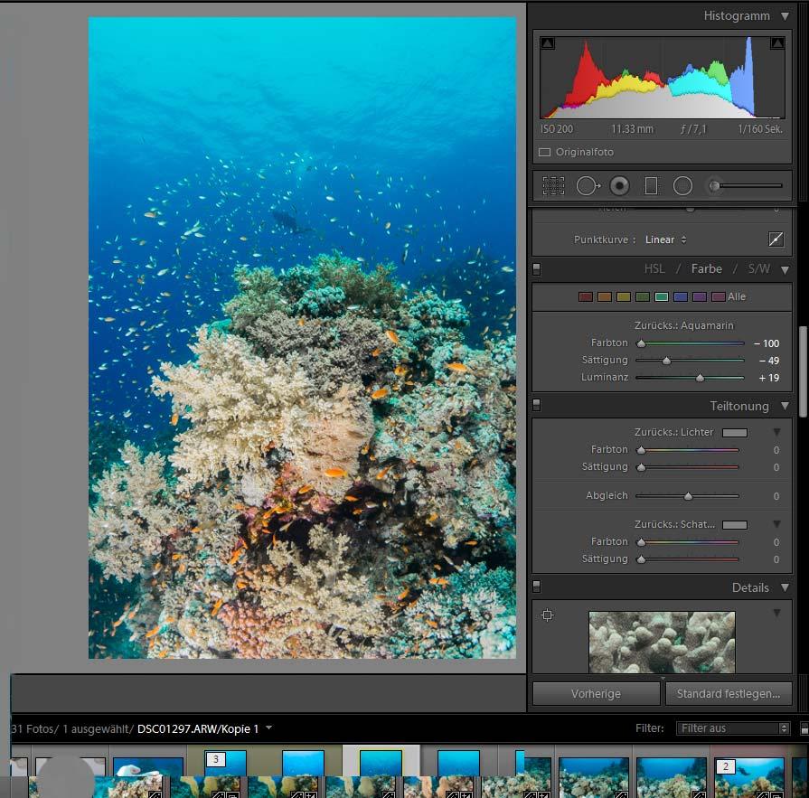 Bildbearbeitung in der Unterwasserfotografie - Farbkorrektur Blau, Aquamarin, Türkis