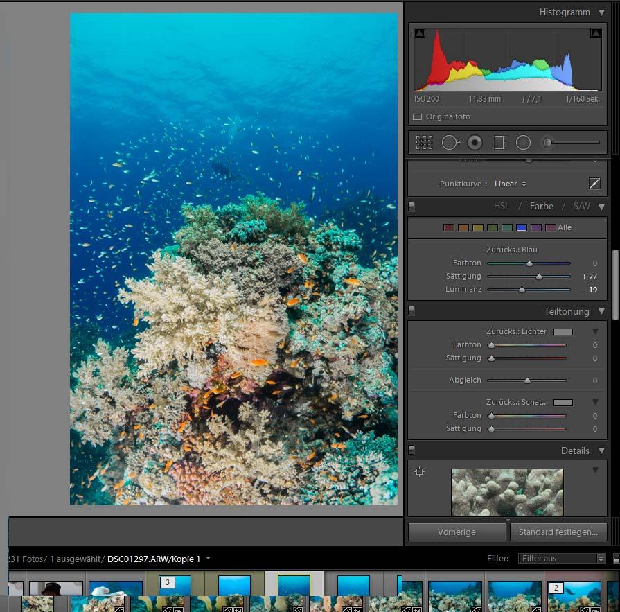 Bildbearbeitung UW-Fotografie Blautöne Blauwasser korrigieren