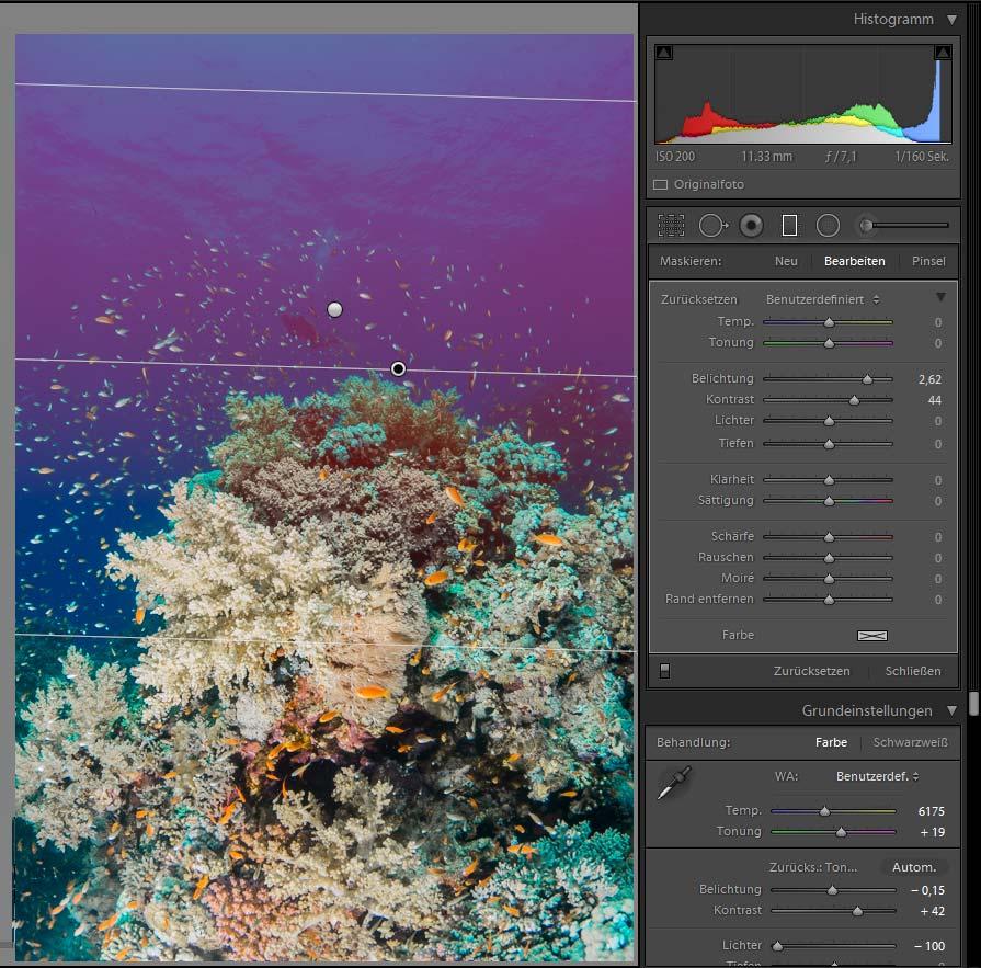 Bildbearbeitung UW-Fotografie Blautöne Blauwasser korrigieren mit dem Verlaufsfilter