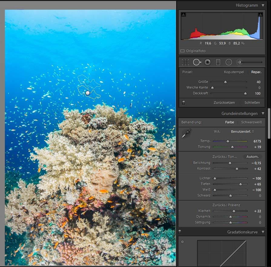 Bildbearbeitung Unterwasserfotografie - Taucher entfernen Stempel Reparaturpinsel