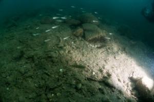 Tauchlampe unter Wasser