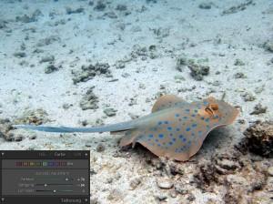Farbkorrektur einer einzelnen Farbe (Aquamarin)